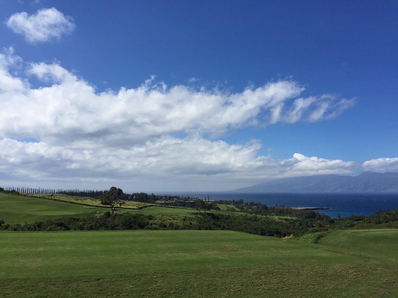 画像1: 【ハワイ】オアフにはない魅力がある‥日本人がいないマウイ島【ひとり時間】