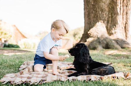 ジョージ王子 Prince George イギリス 2016年 総まとめ 総集編 一年を振り返る 総復習 ロイヤルファミリー イギリス王室 誕生日 7月 愛犬 ルポ
