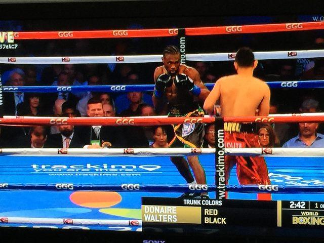 画像2: フィリピンの閃光vsカリブの斧男|ドネアvsウォーターズ ボクシング世界戦