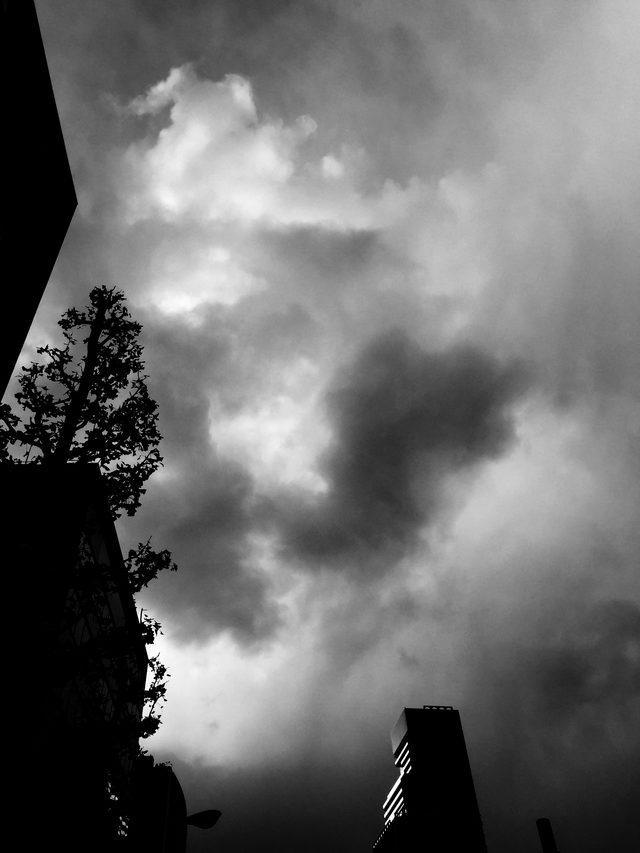 画像: 嵐を予見するか、それとも晴れ間に希望を見出すか