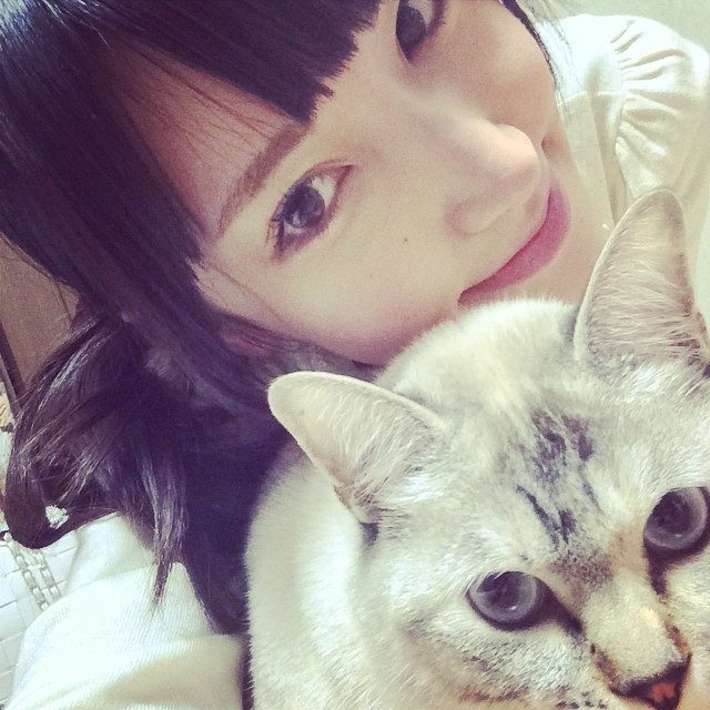 画像: My sweetie〜 ꒰๑͒•௰•๑͒꒱♡ℒℴѵℯ*¨*• ❤˞͛ #kitty #mykitty #mysweetie #mycat #selfie #shucats #cat #model #petmodel #japanesemodel   ...