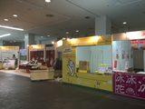 画像2: 日本女子博覧会明日開催!