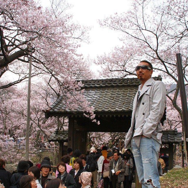画像: 天下第一の桜 「高遠城址公園」のタカトオコヒガンザクラは薄紅色が咲き乱れ壮観! 今が見頃です。 instagram.com