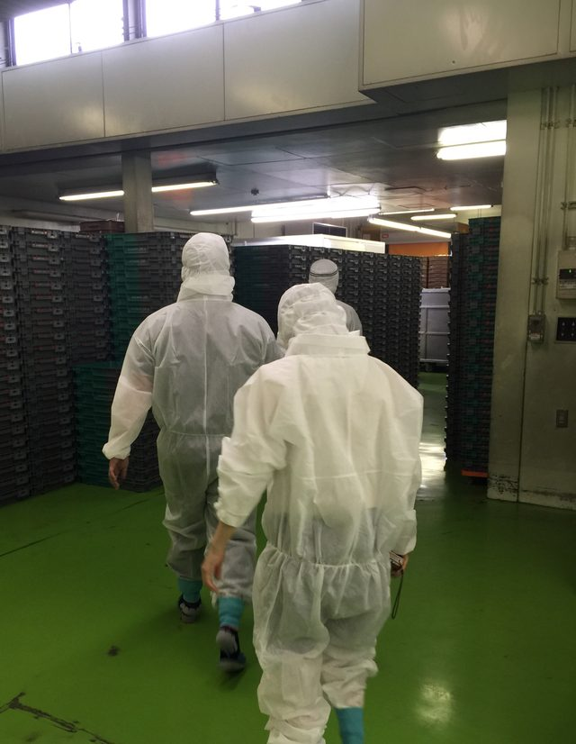 画像3: 携帯サンドイッチの元祖「スナックサンド」の製造現場に密着してみた!!
