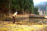 画像: 「吉新氷室 氷屋四代目徳次郎」シーズン前に池の周りの掃除 www.chirorin.com