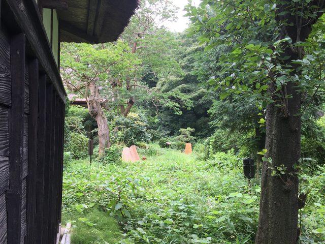 画像: 敷地南側は綱島台という丘陵で、北側斜面付近には氷池あとがあるという。