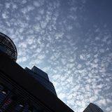 画像: 本日は立秋。赤坂の空も羊雲。秋の入口。 instagram.com