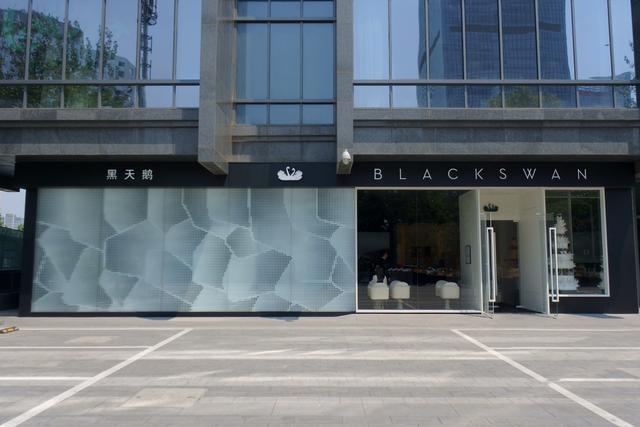 画像2: ブラックスワン 黑天鹅 BLACKSWAN