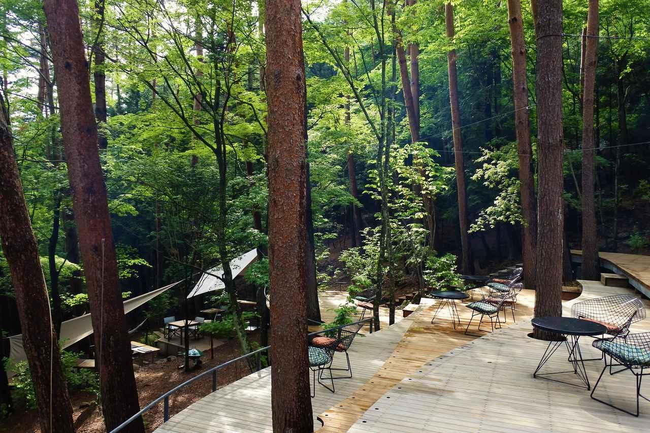 画像1: 林の中、思い思いの場所でスイーツを楽しむ。これもグランピングリゾートの醍醐味!