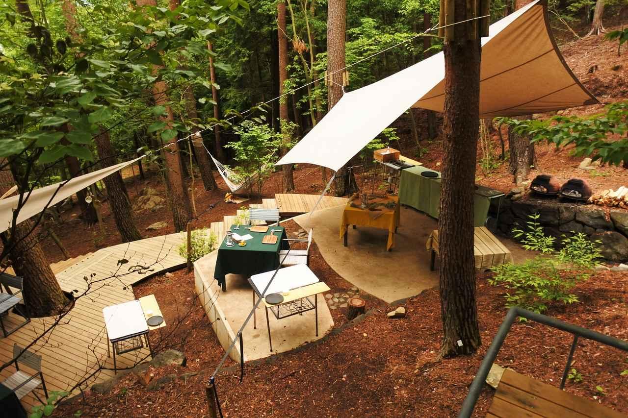 画像: これは「クラウドキッチン」ディナータイムのメインステージ。林が闇に包まれる頃、シェフがテーブル横でダッチオーブンディナーを繰り広げる。