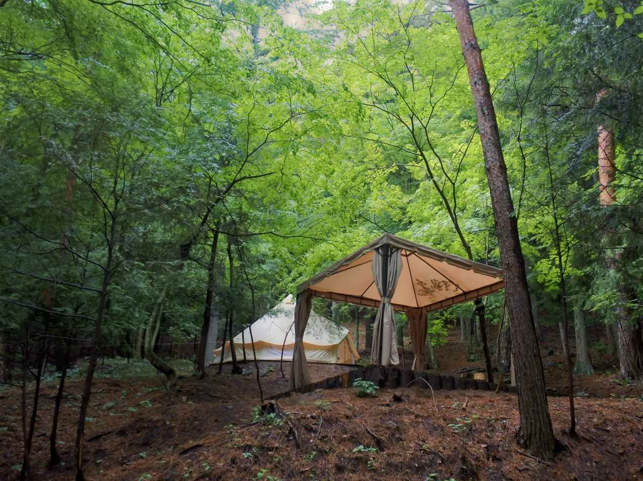 画像2: 林の中、思い思いの場所でスイーツを楽しむ。これもグランピングリゾートの醍醐味!