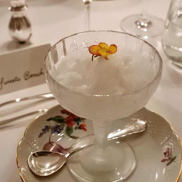 画像: ドイツ大使ご夫妻主催、大使館料理長小林茂樹シェフ創作ドイツ料理を食べる会にて、口直しにでてきた「エルダーフラワーのグラニテ」。 ドイツではここ数年「エルダーフラワー」のシロップを使ったカクテルやドリンクが人気なのだとか。グラニテというより「かき氷」 ... www.instagram.com