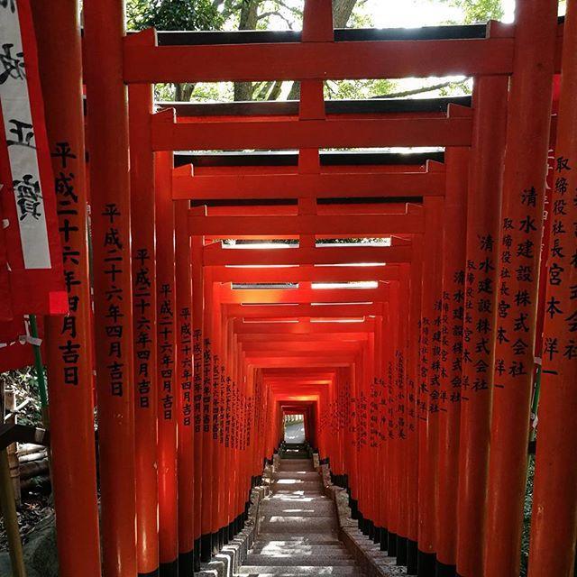 画像: 秋晴れ気持ちいいねえ。 #東京ど真ん中 とは思えない。 #山王稲荷神社 www.instagram.com