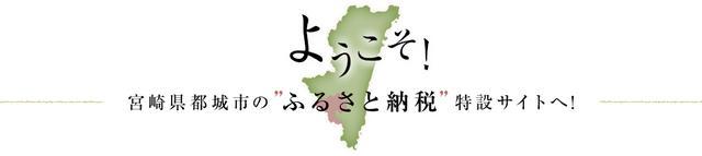 画像: 宮崎県都城市ふるさと納税特設サイト
