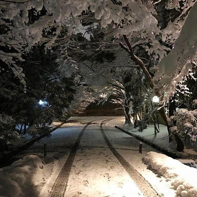 画像: 今夜はここ! #八日市 #招福楼 www.instagram.com