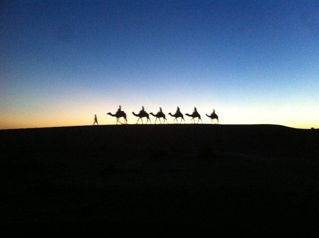 画像: Sahara