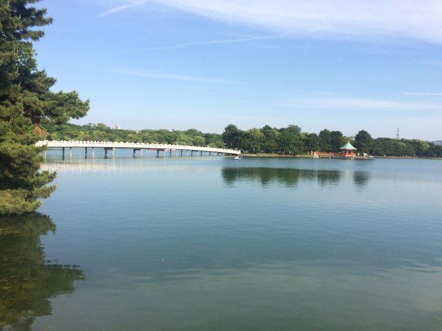 画像2: 大濠公園
