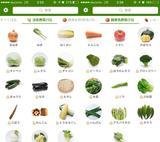 画像: 何気なく扱っている野菜の選び方や保存、それベスト?