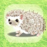画像: 癒しのハリネズミ育成ゲームを App Store で