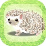 画像: 癒しのハリネズミ育成ゲーム - Google Play の Android アプリ