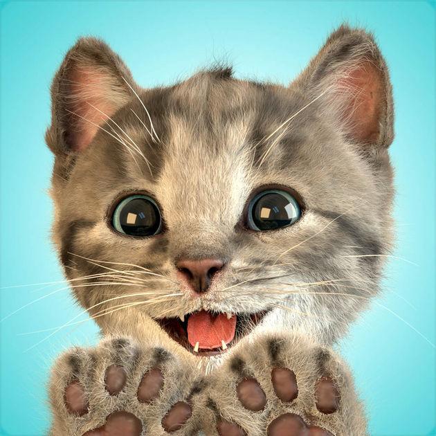 画像: 小さな子猫 - お気に入りの猫を App Store で