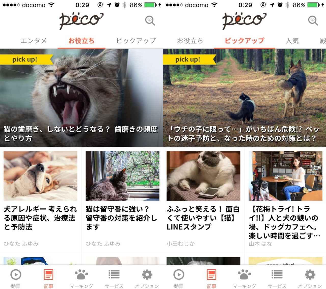画像1: ペットにまつわるお役立ち情報も読めるんです。
