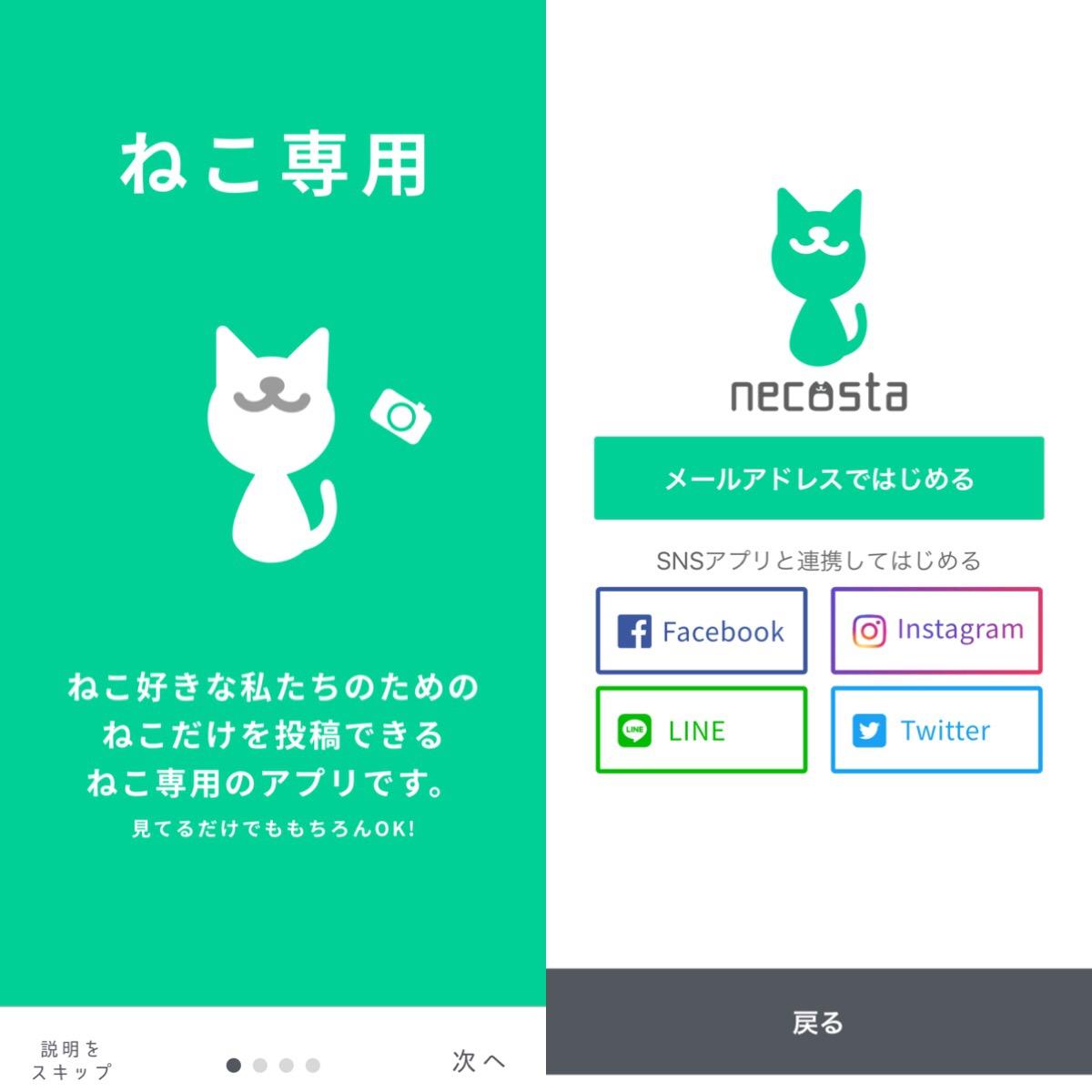 画像: 猫好きのために特化されたSNSアプリ!