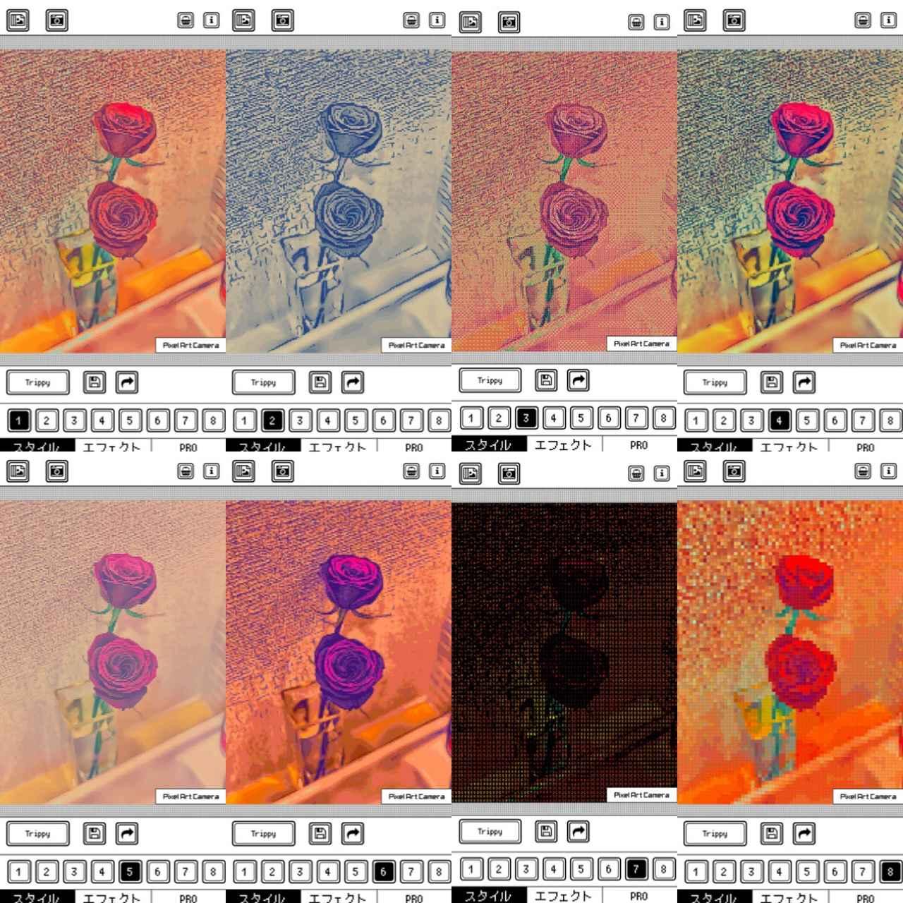 画像1: フィルターはバラエティーに富んだ8種類!