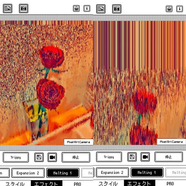 画像3: エフェクトで色や質感がさらに大幅に変化!
