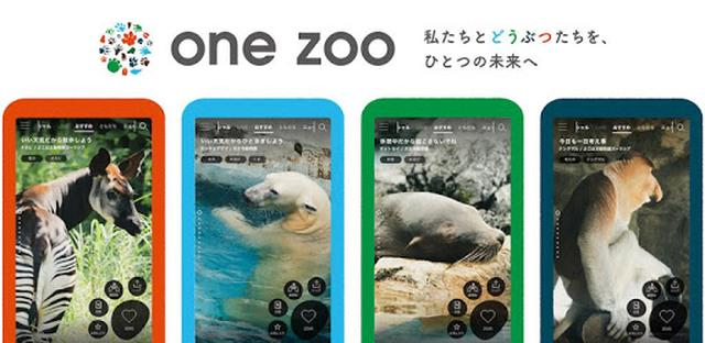 画像: one zoo - Apps on Google Play