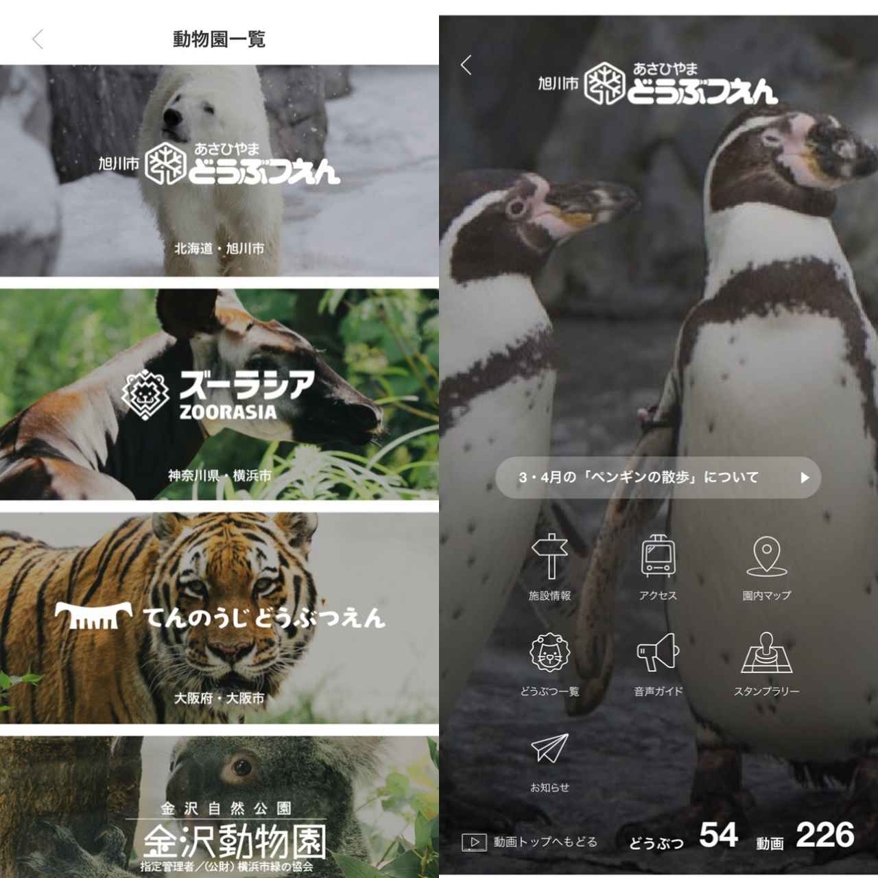 画像1: 各動物園ごとのインフォメーションも。園内マップもこのアプリで。