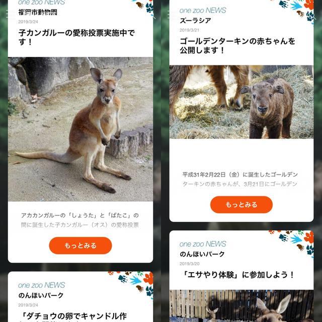 画像: 名付け親にエサやり体験!イベントなどの動物園情報も届きます。