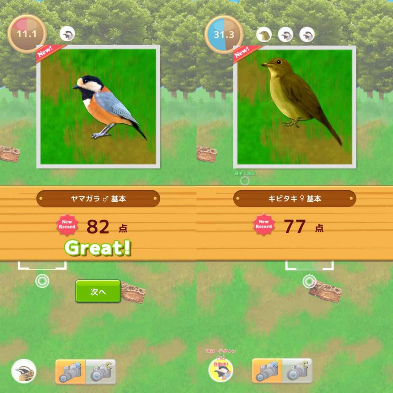 画像2: イベントクエストでさらに新しい野鳥に出会おう!