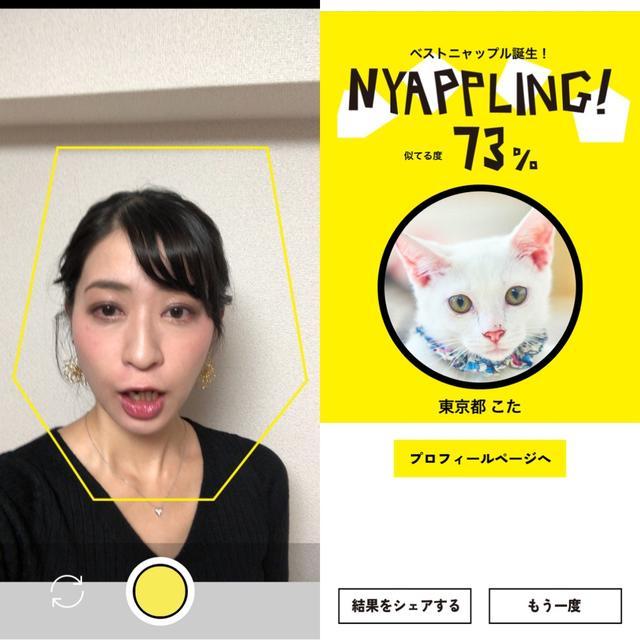 画像2: 色んな顔をして『NYAPPLING』で遊んでみた。