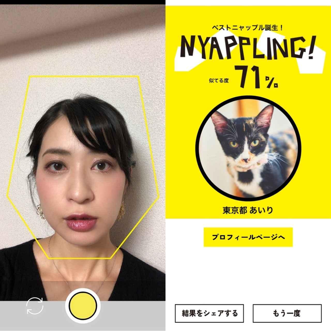 画像1: 色んな顔をして『NYAPPLING』で遊んでみた。