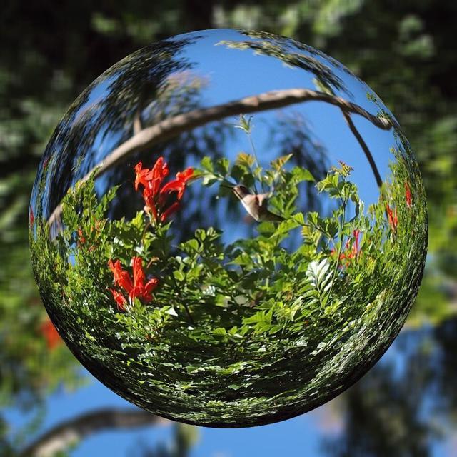 """画像1: Aki Imai (今井安紀) on Instagram: """"『Marble Magick』などの宙玉 加工、もちろん「ビー玉の中の世界」的な世界観も素敵なのですが「小さくしか写せなかったものにぎゅっと寄ってちゃんと主役にできる」というところも好き。 今回は閉じ込めることよりも主役を引き立たせる方にフォーカスした写真をまとめました。…"""" www.instagram.com"""
