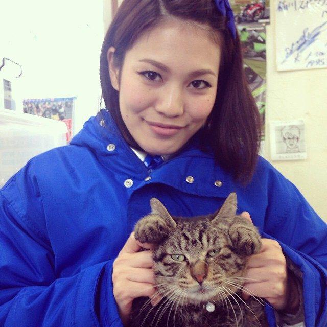 画像: #CAT #PET  にゃー