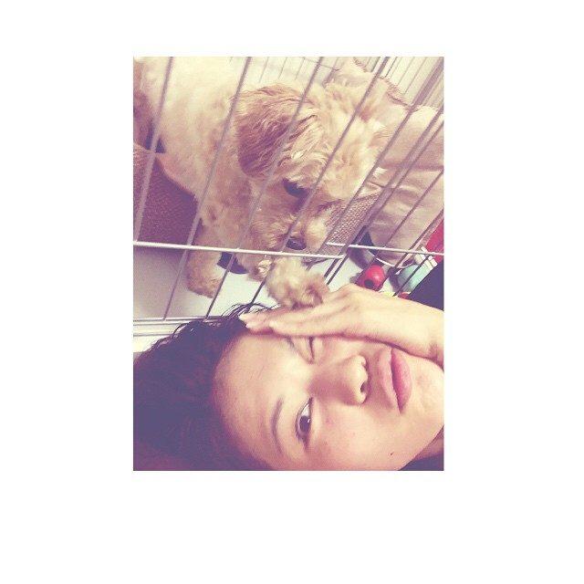 画像: 書類が散らばってるため、 アニーはゲージ。 #出して #遊んで って言ってます。 #痛い instagram.com