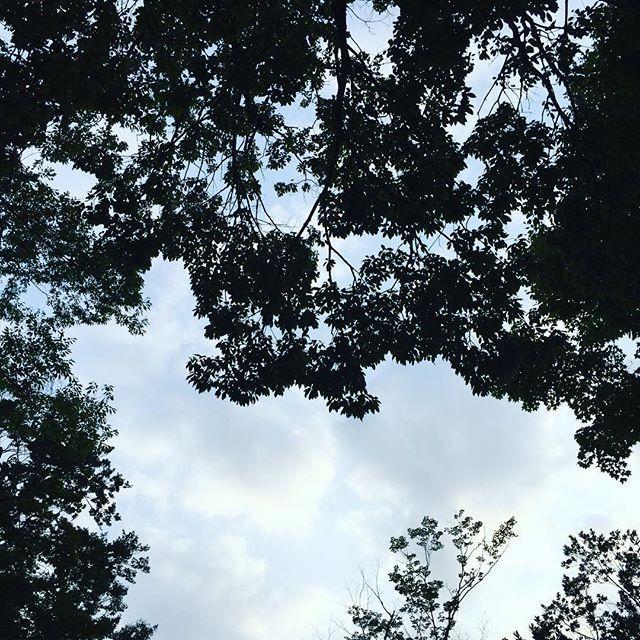 画像: 高尾山口ビアガーデン #高尾山 #ビアガーデン #15人 #大人数 #ポケンモン #ミューツー #でるらしい www.instagram.com