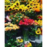 画像: I love  flower ♡♡♡ #flower #love #happy www.instagram.com
