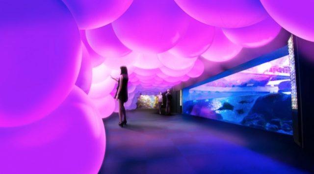 画像: 呼応する球体と夜の魚たち / Resonating Spheres and Night Fish チームラボ, 2015, インタラクティブデジタルインスタレーション, 音楽:高橋英明 夜の水族館の空間は、光の球体に囲まれている。光の球体は、人が叩いたり何かにぶつかっ たりして衝撃を受けると、光の色を変化させ、色特有の音色を響かせる。そして、そのまわりの球体も呼応し、同じ光の色に変化し音色を響 かせる。そして次々にまわりの球体も連続していく。 www.team-lab.net