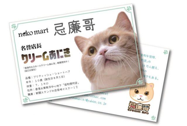 """画像: ■香港の大スター猫『クリームあにき』が「neko mart」の名誉店長に就任します。名誉店長就任を記念して、『クリームあにき』商品をお買上げの方に、名誉店長就任記念""""名刺""""をプレゼント。*無くなり次第終了。また、8月15日(土)から、「クリームあにきneko mart名誉店長就任式in香港」の動画もコーナーで放映します。"""