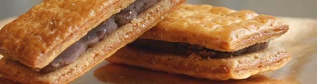 画像2: www.pie-japan.com