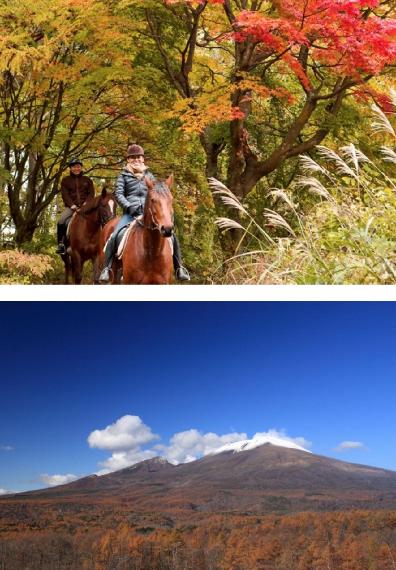 画像1: 「星のや軽井沢」で「紅葉乗馬カフェ」開催
