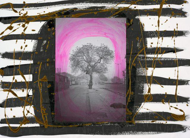 画像: ラッセル・スコット・ピーグラー(アメリカ、1980)《早朝の木、デリー》(C)Russell Scott Peagler