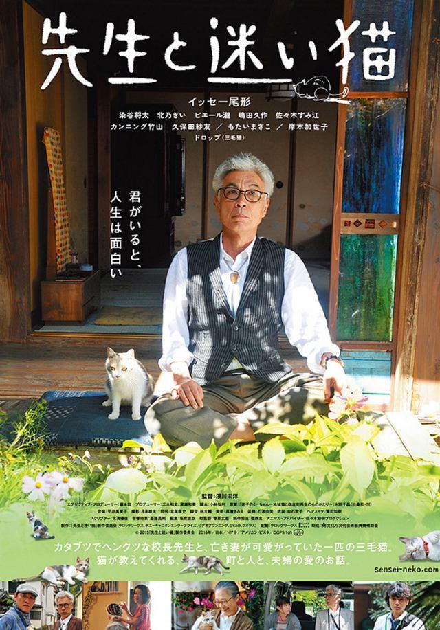 画像: 映画「先生と迷い猫」上映