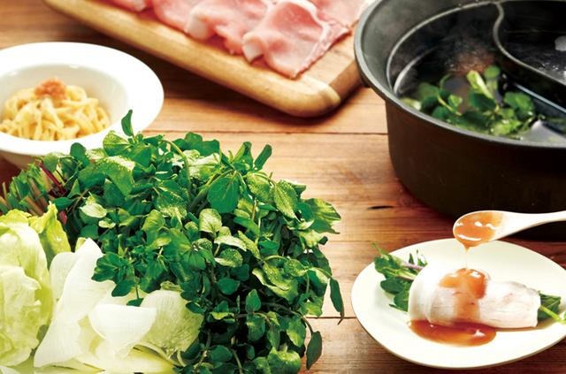 画像: ごちそうクレソン鍋