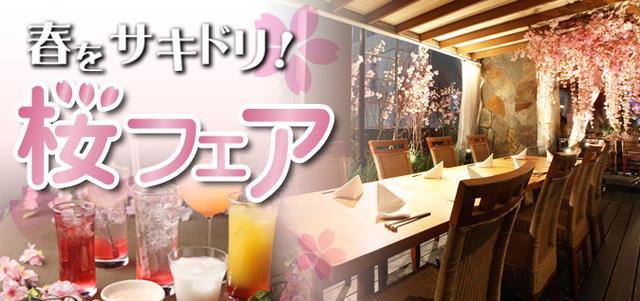 画像: 春をサキドリ! テラスBBQや暖かい店内でお花見のできるお店 - ダイヤモンドダイニング