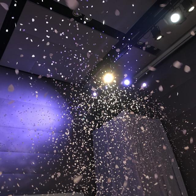 画像: 舞い散る桜吹雪!圧巻でした!