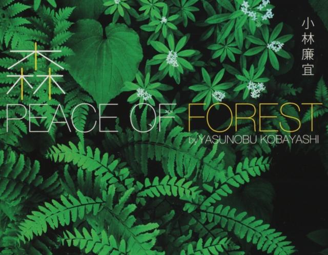 画像: ▼ 出版物概要 1.書籍名:『森 PEACE OF FOREST』 2.発売日:2016年3月16日 3.定価:本体2,300円+税 4.判型:A4変型判 240頁